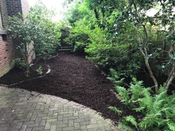 Mulching And Landscape